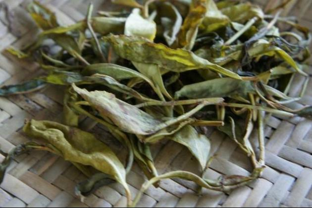 六龜原生種喬木野韻青茶 4